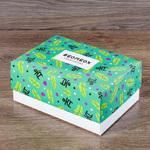 Коробка крышка-дно 24х17х10 см