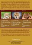 Листовка животные (А4)