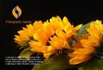цветы флорист праздник