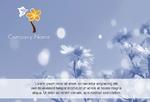 цветы праздник 8 марта