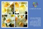 цветы флорист праздник 8 марта