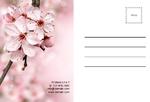 Post card postcard-17