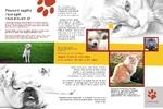 ветеринарная клиника питомники