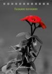 красный цветок ч/б