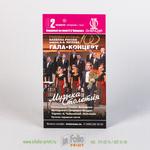 Информационный флаер о проведении музыкального концерта