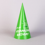 Колпаки для сотрудников на день рождения компании