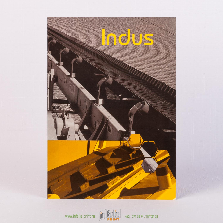 Плакат Indus
