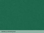 Colorplan Emerald / Изумрудный
