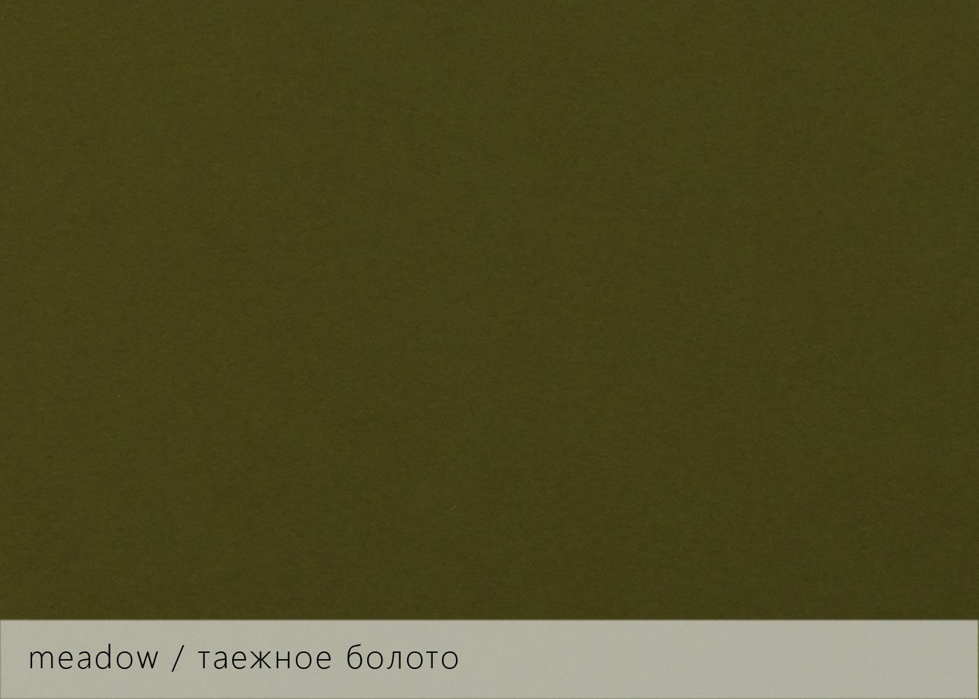 Keaykolour meadow / таежное болото