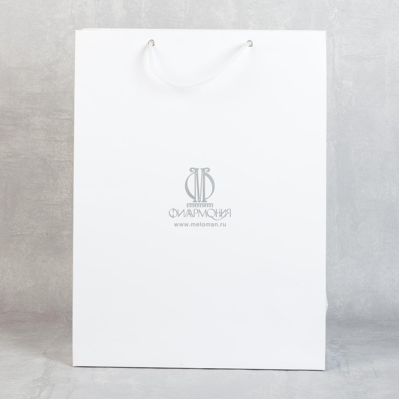пакет А3 с тиснением матовым серебром