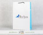 Бумажный пакет А4+ 245х360х80 мм