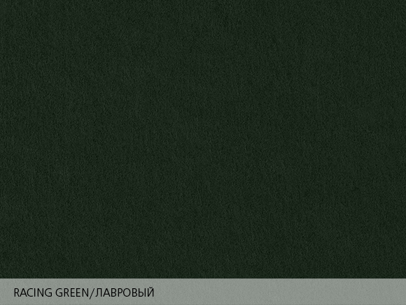 Colorplan Racing Green / Лавровый