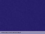 Colorplan Royal Blue / Сине-фиолетовый