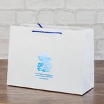пакет с тиснением голубой фольгой
