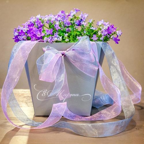 Пакет под цветочный горшок